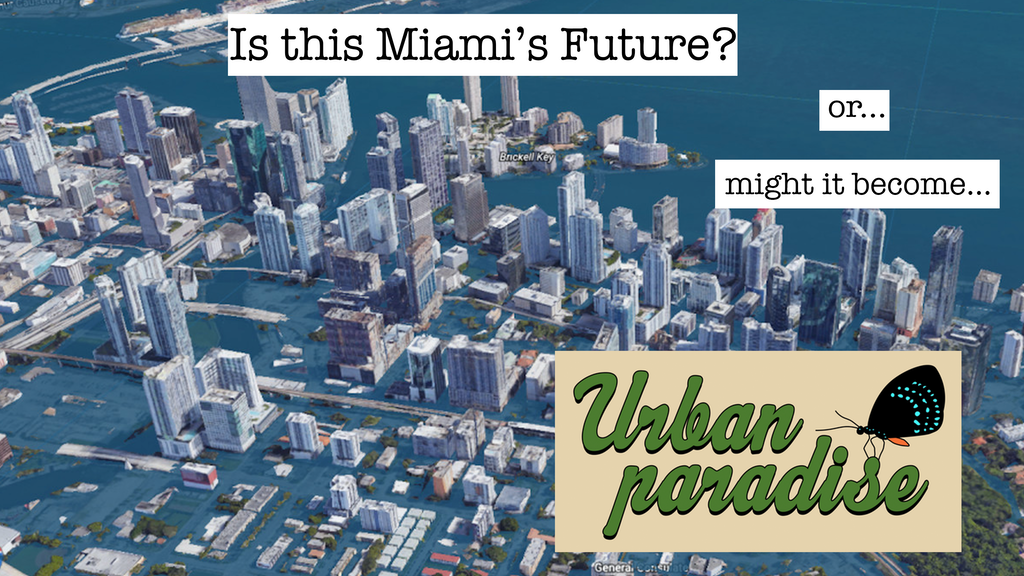 Urban Paradise project video thumbnail