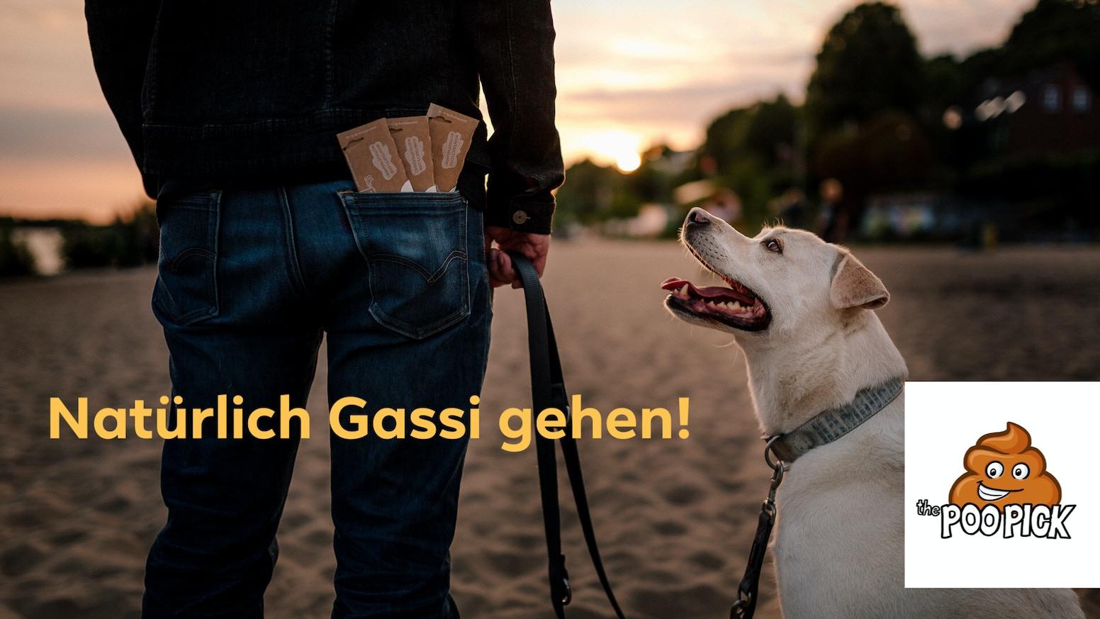 Mit dem PooPick bieten wir Hundebesitzern die Möglichkeit Hundekot ohne Plastik und ohne Berührung aufnehmen zu können.