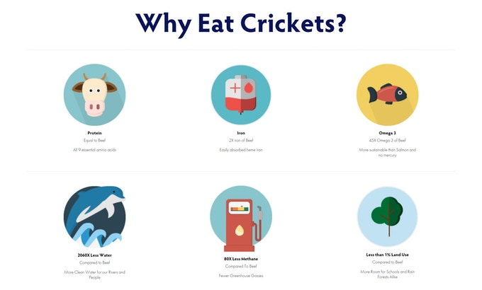 Why eat crickets?