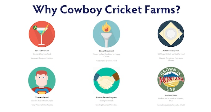 Cowboy Cricket Jumpers made with SuperCrickets by Cowboy