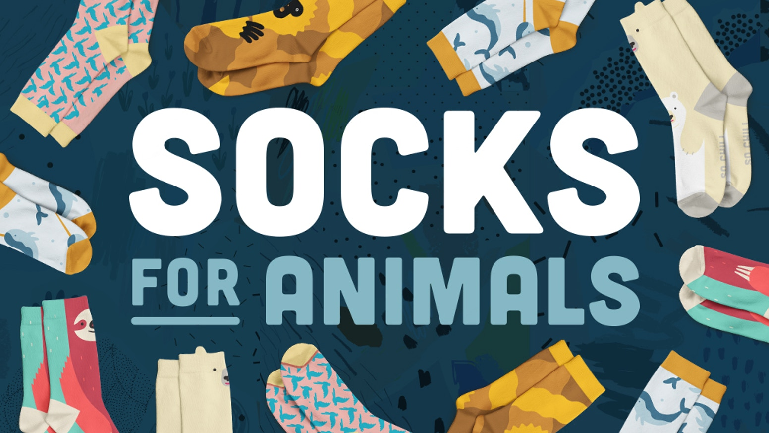 Socks HUMANS wear FOR wildlife research!