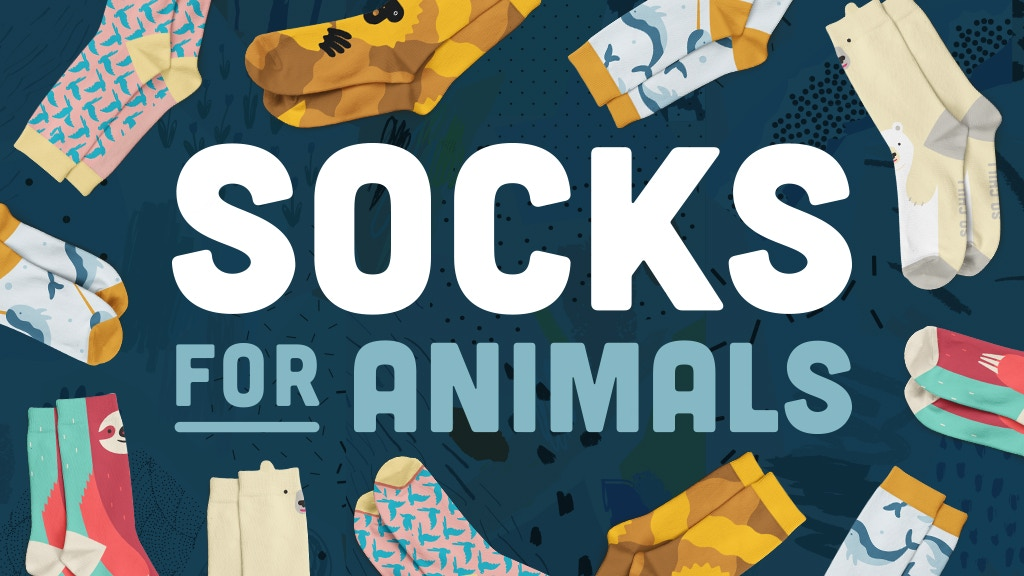 Socks for Animals project video thumbnail