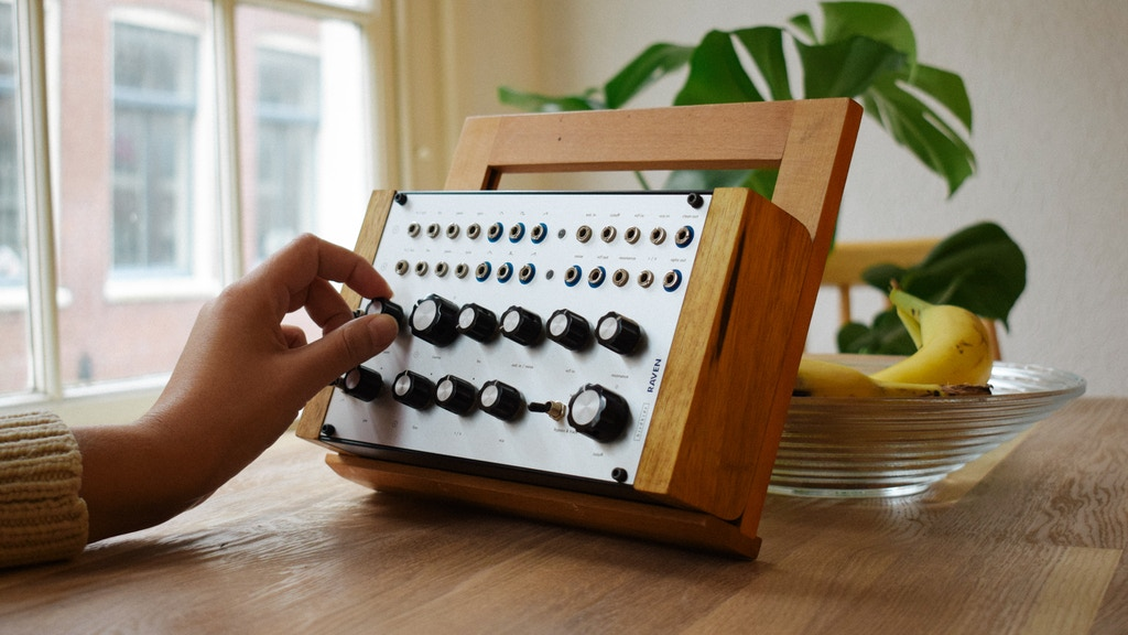 RAVEN a 100% analog, synthesizer voice. Made in Austria. project video thumbnail