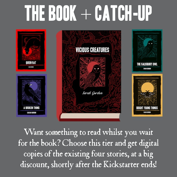 For bookworms who can't wait for their physical book. Please note: all higher tiers come with an option to download the existing four comics.