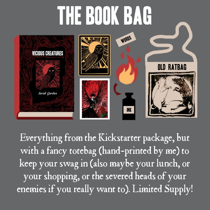 The book package, plus the ink-making fun, plus a fancy tote bag for keeping things in.