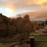 Rainier Family Farm