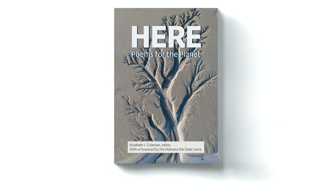 """The cover will feature photography by Daniel Bosma depicting an """"aerial view of amazing natural shapes and textures created by tidal changes,"""" with design by VJB/Scribe."""