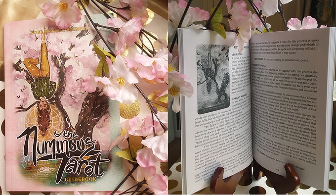 The guidebook cover and interior.