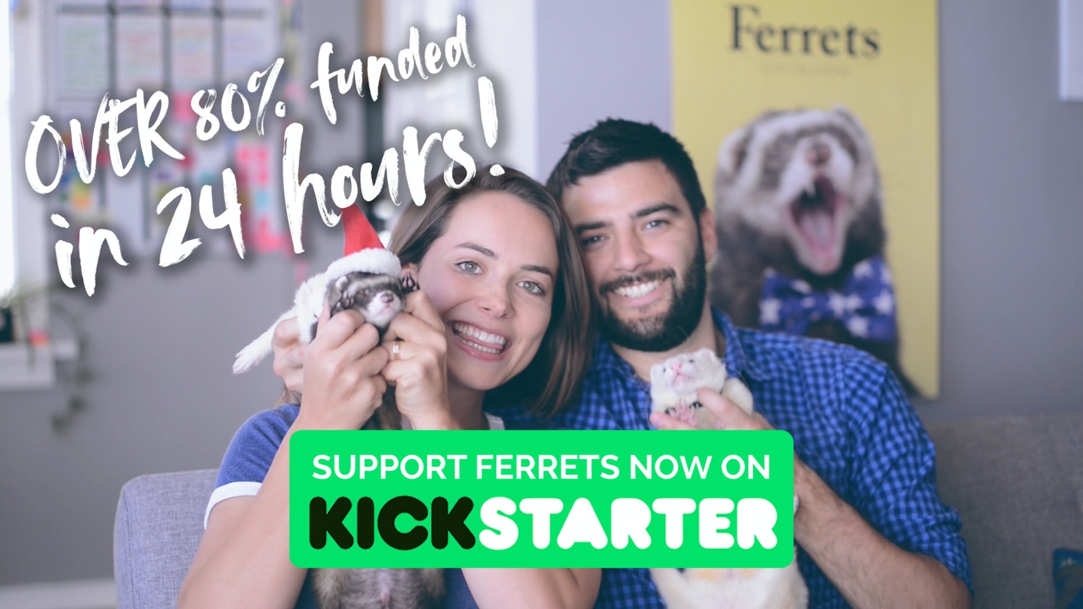 Help us create the world's LARGEST Ferret Calendar and educate children about this incredible animal.