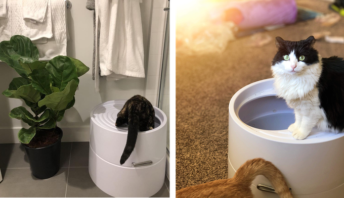 Boxscoop 2.0: The World's Fastest Cleaning Cat Litter 'Box ...