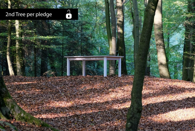 Every pledge plants a second tree // Jede Unterstützung pflanzt einen zweiten Baum