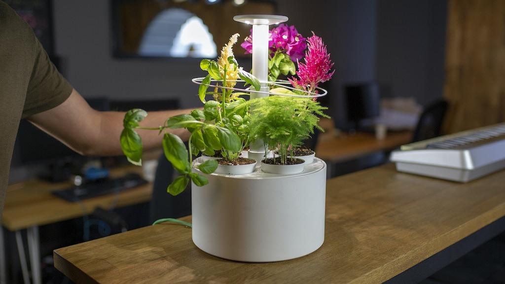 Plantone: Smartest Mini Indoor Garden project video thumbnail
