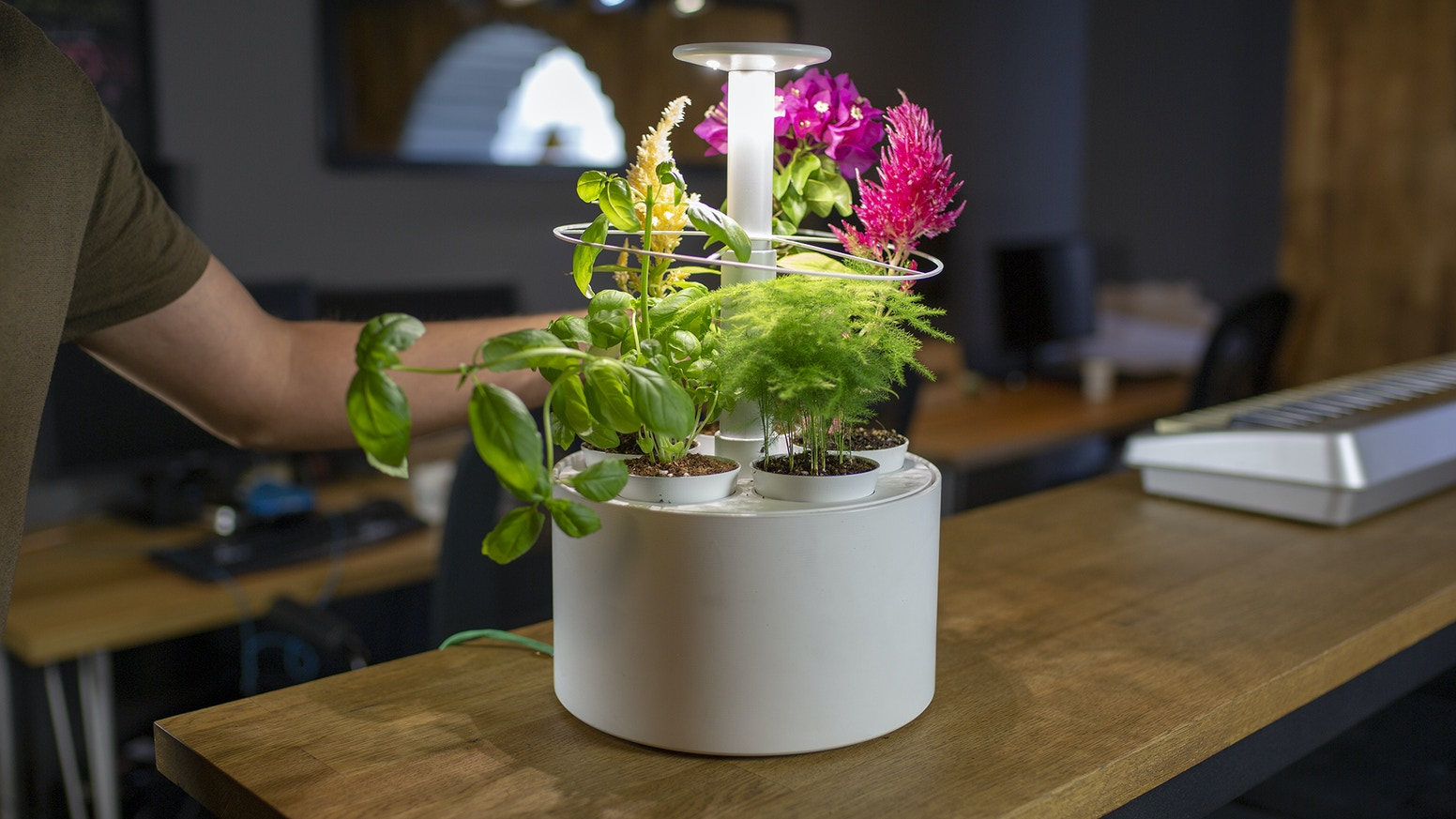Automatic watering, adjustable lights, and app control for a smarter way to grow plants!