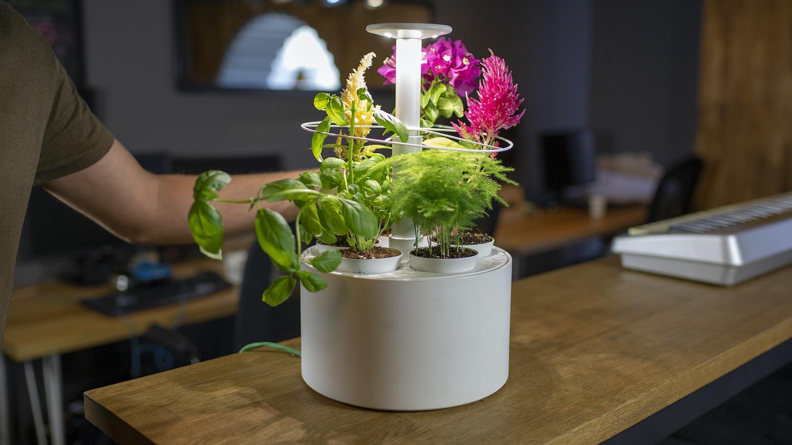 Plantone Smartest Mini Indoor Garden By Kickstarter