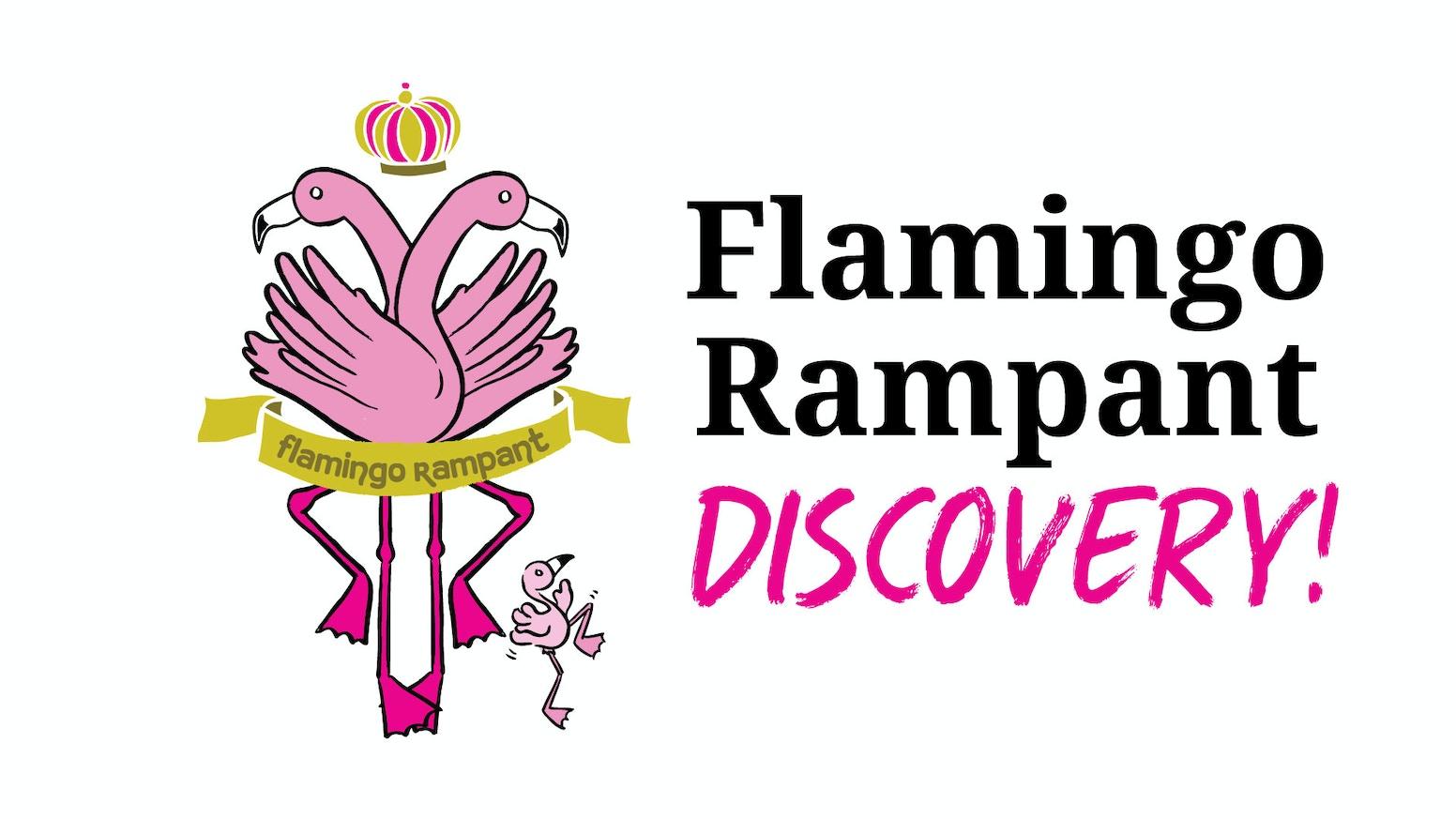Flamingo Rampant 2019: Discovery!