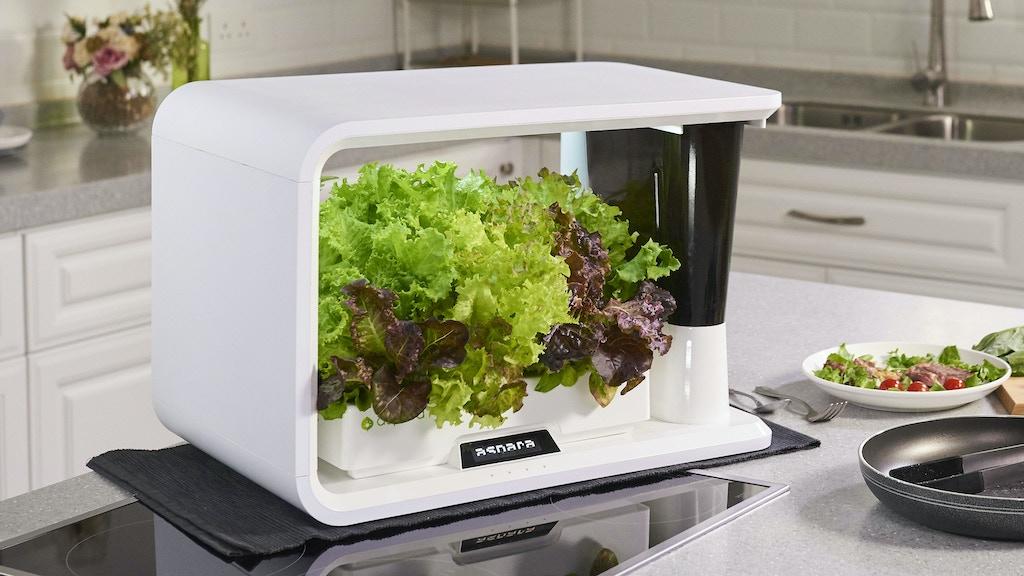 aspara™: The Smart Indoor Garden