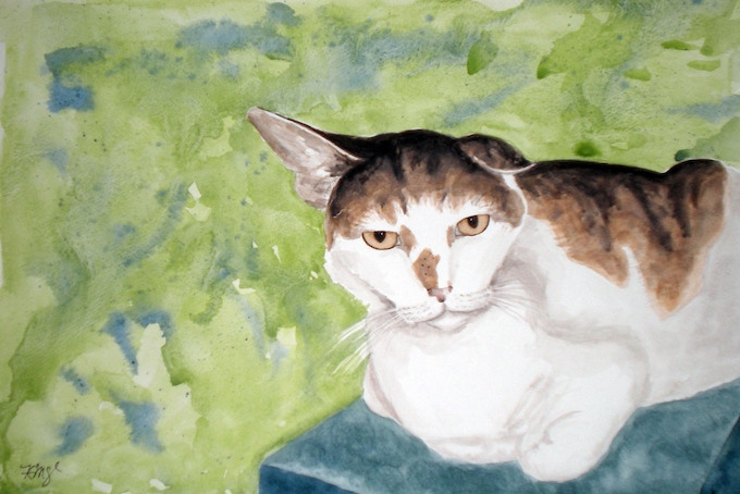 """Lyttle"" by Kristen Reynolds Watercolor 2007. This was my favorite cat when I volunteered at the PetSmart kitty windows for the SPCA when I lived in Newport News, VA. Chill af."