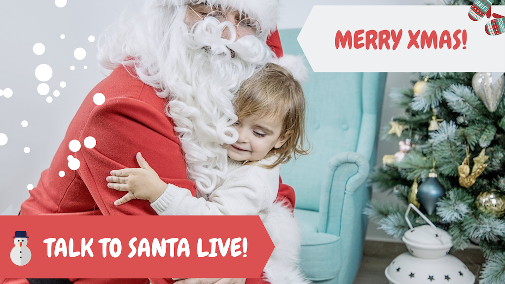 Project image for Santa Claus LIVE Video Call