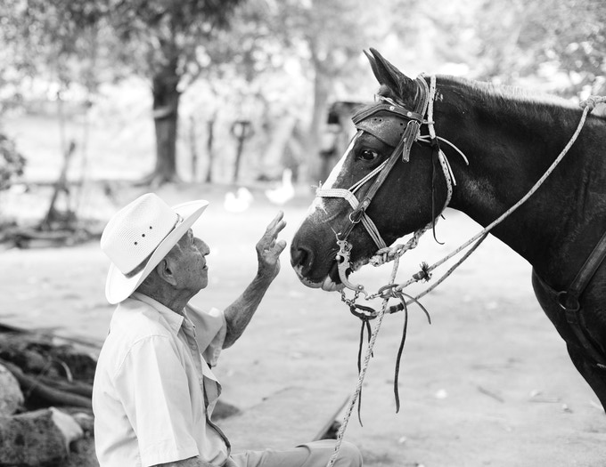 Don Pacito (101) et son cheval. Don Pacito (101) and his horse. Nicoya, Costa-Rica.