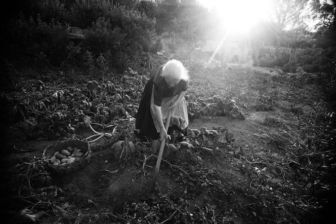 En Ogliastra, les aînés ne consomment pratiquement que les produits de leur jardin. In Ogliastra the elders almost exclusively eat the food they grow themselves.