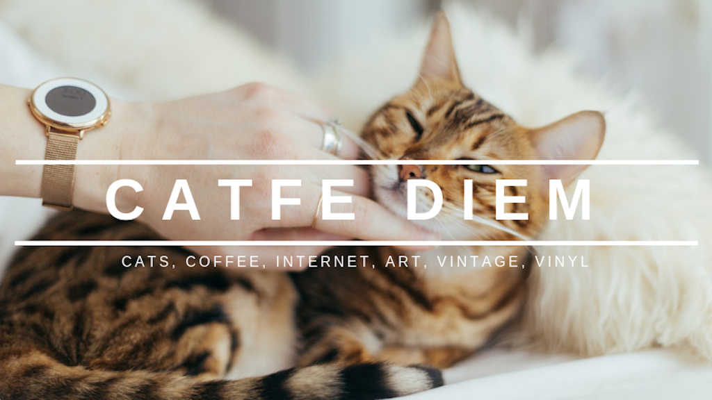 Project image for Catfe Diem Cat Café & Record Shop