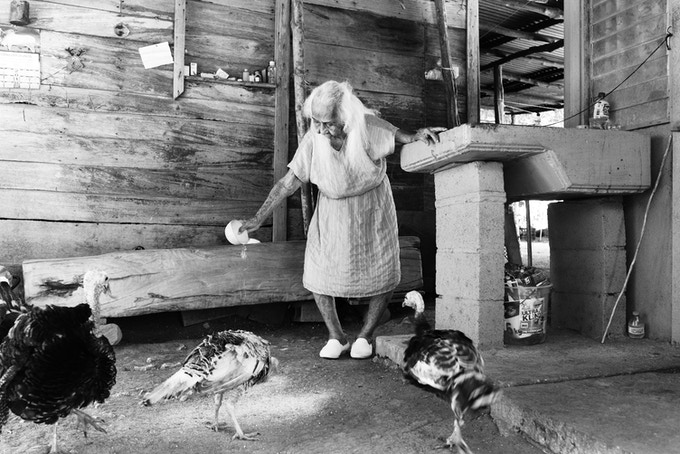 Trinidad (102) nourrit les animaux de sa petite ferme à Nicoya. Trinidad (102) feeding her animals, Nicoya.