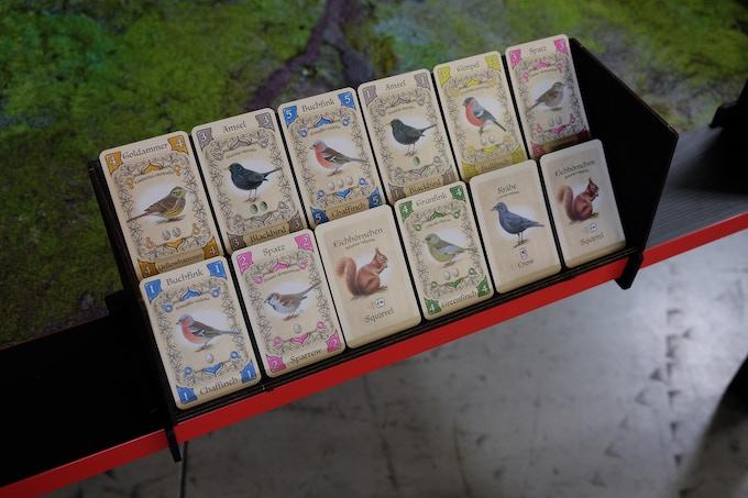 Kartenablage Schräg 2 / Card Display 2 LvLs