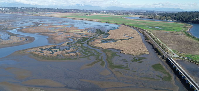 Estuaries are big, pollution tests are expensive. Connecting tests with maps can save costs by interpolating the concentration of pollutants.