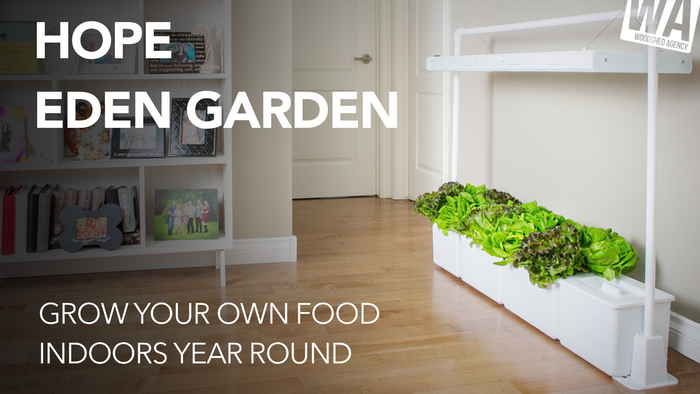 A Simple, Plug-and-Play, affordable Indoor Garden that fits any lifestyle