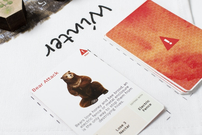 Hazard Cards on cloth board