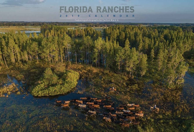 2019 Florida Ranches Calendar - Photographs of ranches that provide critical wildlife habitat and make up the Path of the Panther. This calendar is available at the $35 level of support.