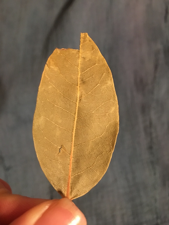 Burning bay leaves dates back to Greek times. They are fragrant and grounding, sparking and snapping when lit.