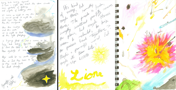"""Left: """"Symmetry with a Star,"""" and right: a two-page reflection called """"Lions"""""""
