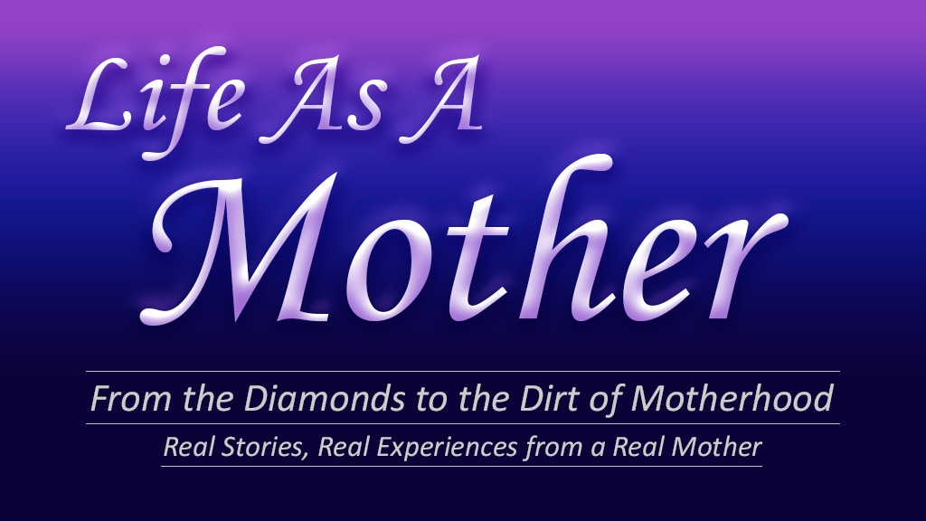 Reality of Motherhood Book