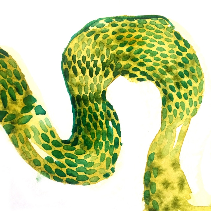 Mistake 41: Lumpy Snake