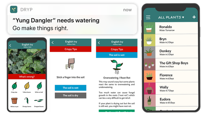 DRYP tells you when to water your plants