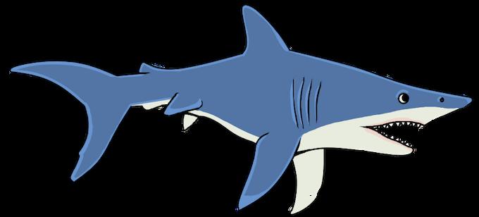 sharks!!! :D early