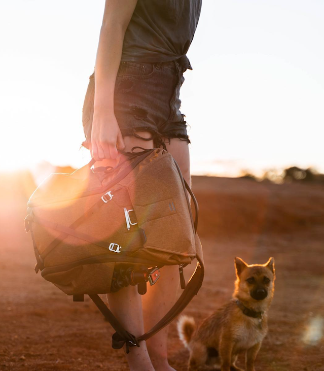 True, it's technically not a bag in the Travel Line, but we couldn't stop oogling over @thekback's pup, Link.