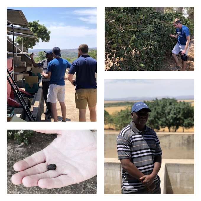 Coffee Farm Manager teaches us about coffee production in Zambia