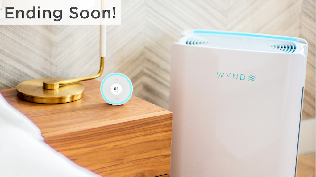 Wynd Halo + Home Purifier: Keep your home's air healthy project video thumbnail