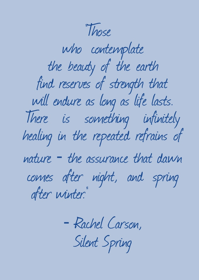 """""""Those who contemplate the beauty of the earth find reserves of strength that will endure as long as life lasts. There is something infinitely healing in the repeated refrains of nature - the assurance that dawn comes after night, and spring after winter."""" - Rachel Carson, Silent Spring"""