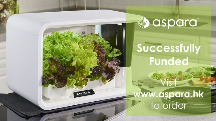 Produce healthy, fresh vegetables and herbs right in your kitchen, no experience necessary!