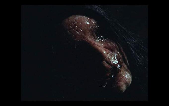 Dead Torbjorn