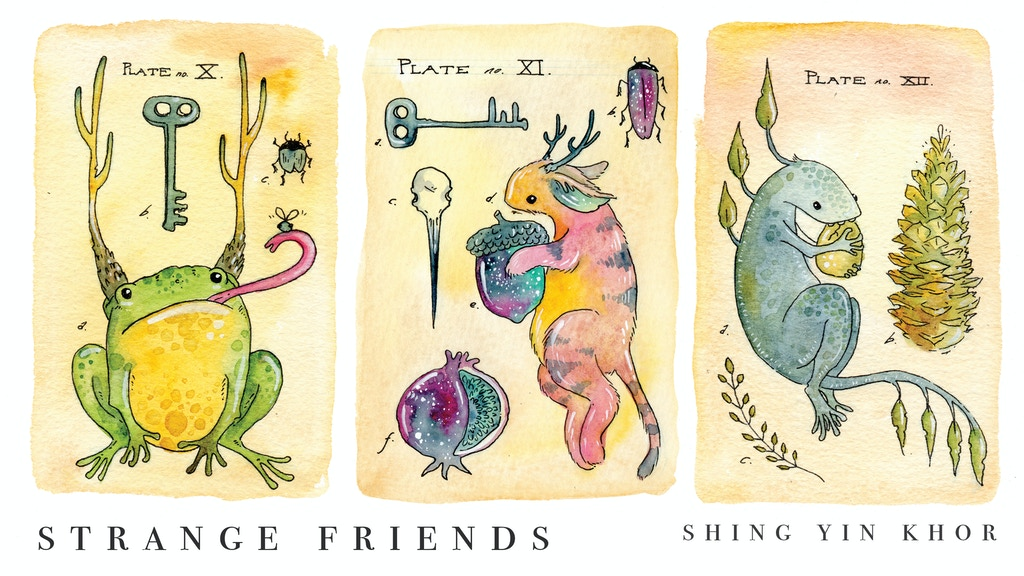 Strange Friends: a postcard book project video thumbnail