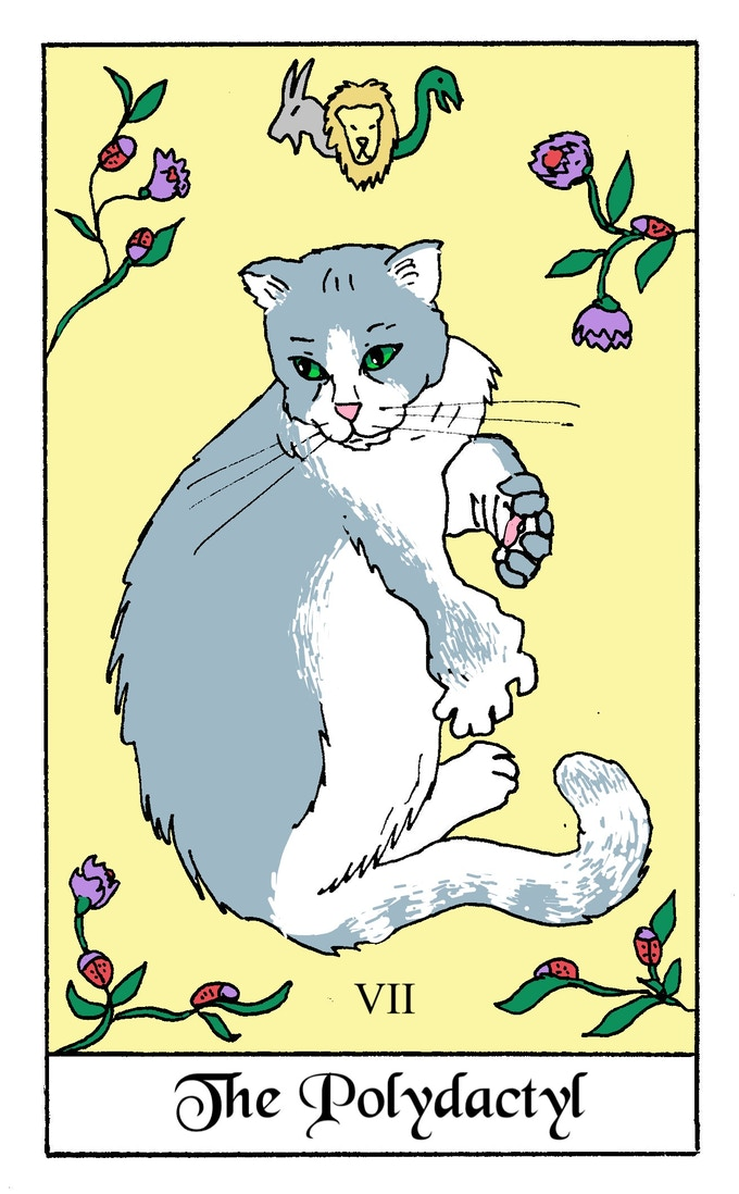 Polydactyl Card