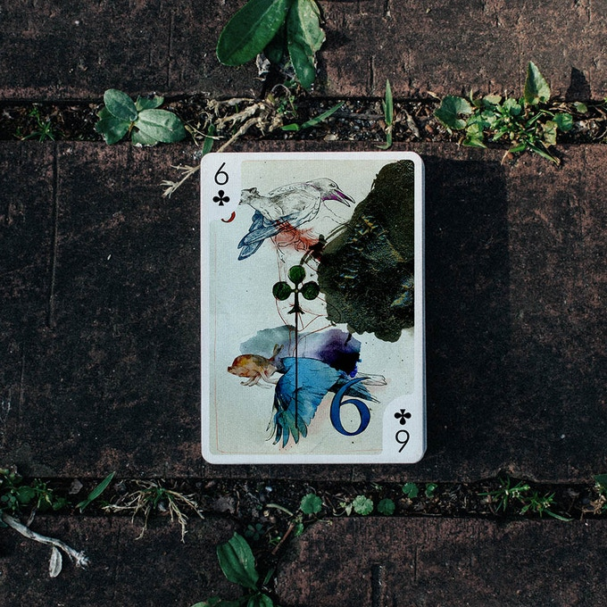 6 of Clubs by Vitalik Sheptuhin (Russia)