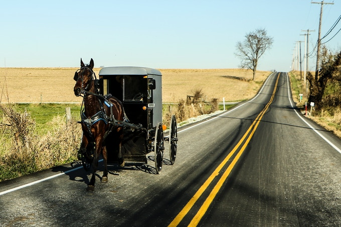 This is what our Horse and Buggy will look like.
