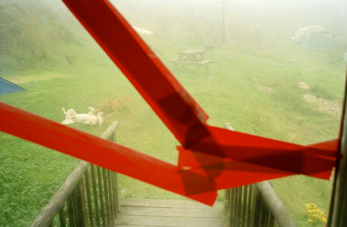 """©Chris Steele-Perkins,""""Wales 2000, dogs playing and broken window"""" from the book Echoes. Editioned inkjet print."""