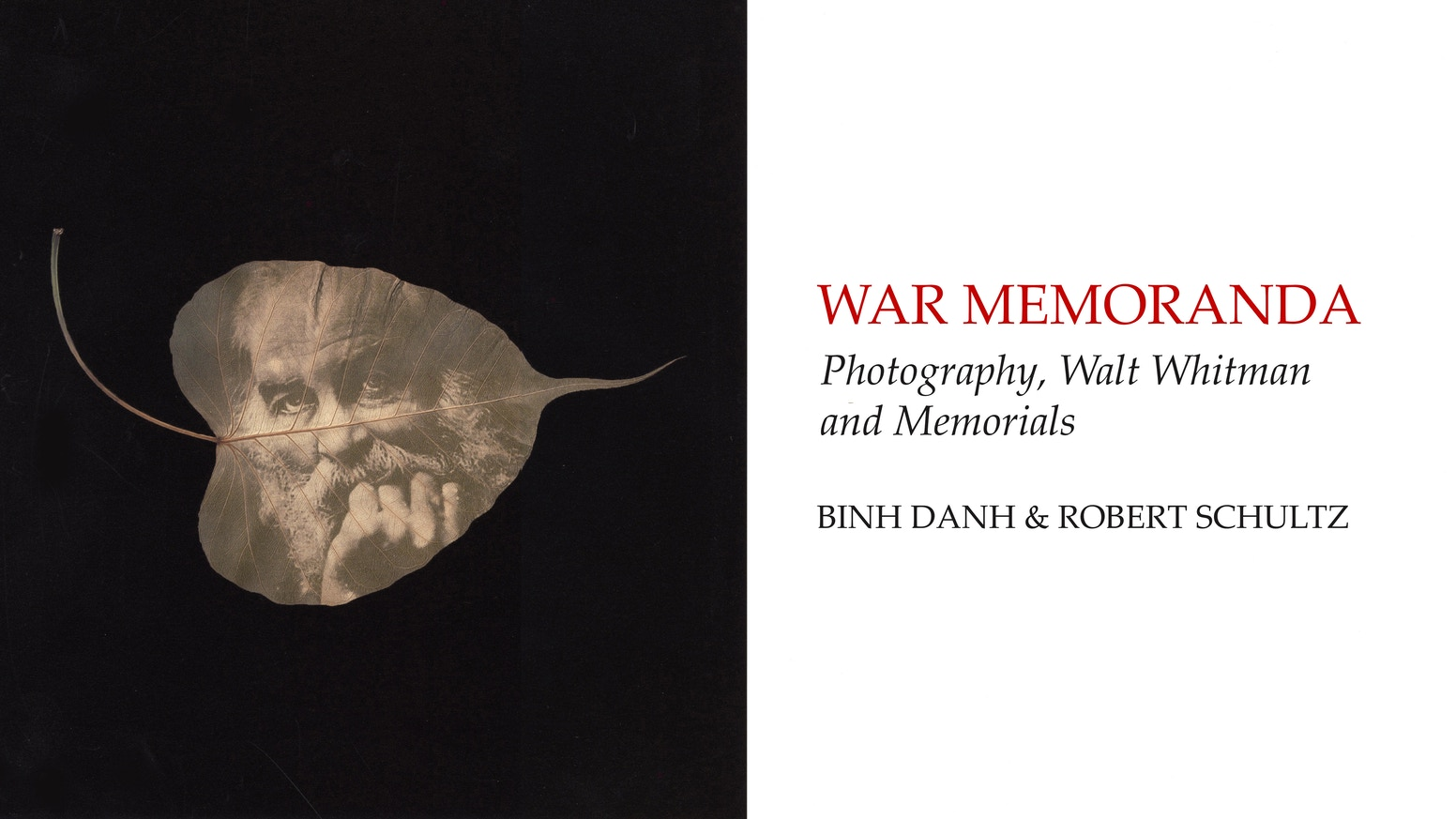 A book of photography, poetry, and comment on the U.S. Civil War and our contemporary moment