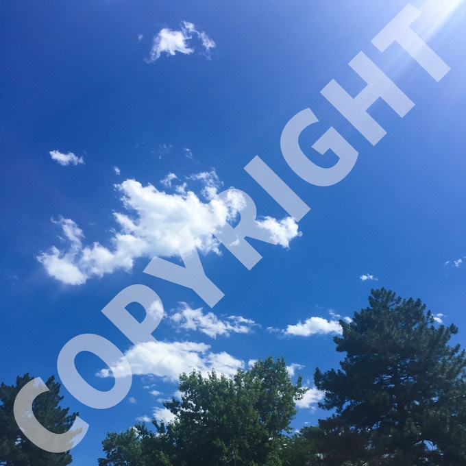 Shared Love, No. 5. Erika to Danny, July 9, 2016, 3:02 PM, Glennon Heights, Lakewood, Colorado, USA